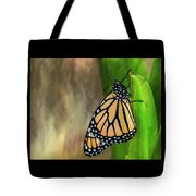 Monarch Butterfly Poised On Green Stem Tote Bag