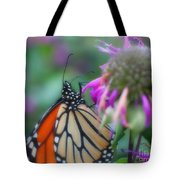 Monarch Butterfly Posing Tote Bag