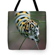 Monarch Caterpillar Clutches Dill In Pincers, Macro Tote Bag