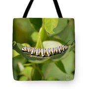 Monarch Caterpillar Tote Bag