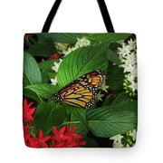 Monarch Framed Tote Bag