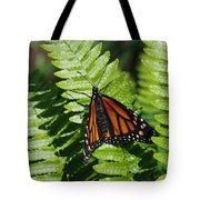 Monarch On A Fern Tote Bag