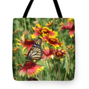 Monarch On Blanketflower Tote Bag