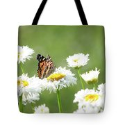 Monarch On Daisies Tote Bag