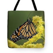 Monarch On Goldenrod Tote Bag