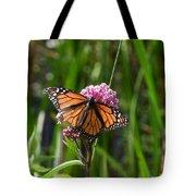 Monarch On Joe Pye Tote Bag