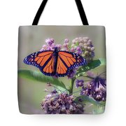 Monarch On The Milkweed Tote Bag
