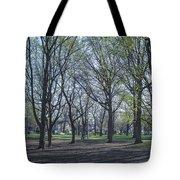 Monarch Park - 1100 Tote Bag
