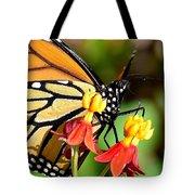 Monarch Pollination 1 Tote Bag