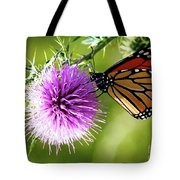 Monarch Thistle Tote Bag