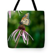 Monarched Coneflower Tote Bag