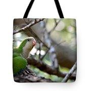 Monk Parrot Tote Bag