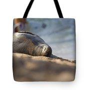 Monk Seal Basking. Tote Bag