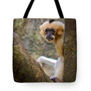 Monkey Chillin Tote Bag