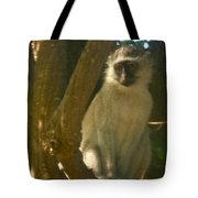 Monkey In The Tree Tote Bag