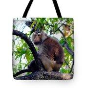 Monkey In Tree Tote Bag