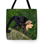 Monkey On My Back Tote Bag