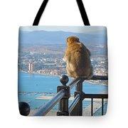 Monkey Overlooking Spain Tote Bag