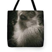 Monkey Portrait Tote Bag