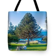 Monkey Puzzle Tree In Central Park In Bariloche-argentina  Tote Bag