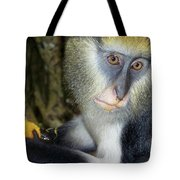 Monkey With His Mango Tote Bag