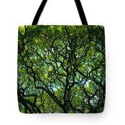 Monkeypod Canopy Tote Bag