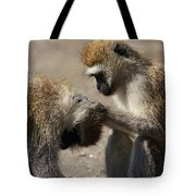 Monkeys Grooming Tote Bag