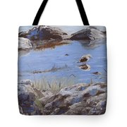 Mono Lake Tote Bag