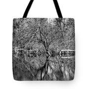 Monochrome Autumn Reflections Tote Bag