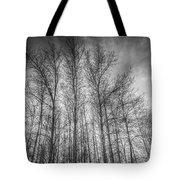 Monochrome Sunset Trees Tote Bag