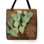 Monsoon Prickly Pear Tote Bag