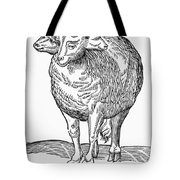 Monster, 16th Century Tote Bag
