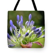 Montana Flower  Tote Bag