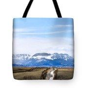 Montana Scenery One Tote Bag