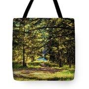 Montana Scenery Tote Bag