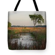 Montezuma Morning Tote Bag