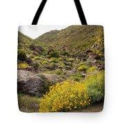 Montezuma Rd Daisey Garden Tote Bag