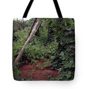 Monticello Vegetable Garden  Tee Pee Tote Bag