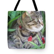 Monty In The Garden Tote Bag