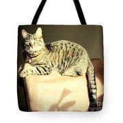 Monty's Pose Tote Bag