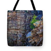 Monument Cove I Tote Bag