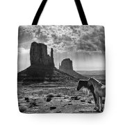 Monument Valley Horses Tote Bag