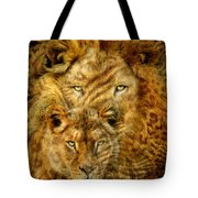 Moods Of Africa - Lions 2 Tote Bag