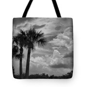 Moody Florida Sky Tote Bag