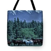 Moody Mountains Tote Bag