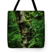Moody Tree In Forest Tote Bag