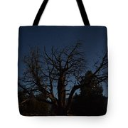Moon Brings Life To An Old Tree Tote Bag