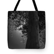 Moon Fall Tote Bag