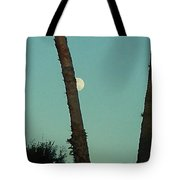 Moon Hiding Behind The Palm Tote Bag