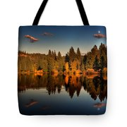 Moon Over Mill Pond Tote Bag